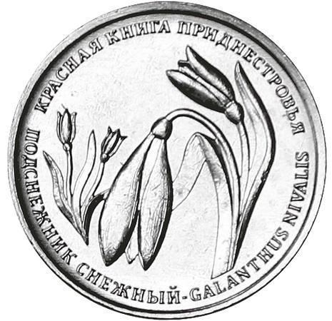 Приднестровье 1 рубль 2020 Подснежник Снежный