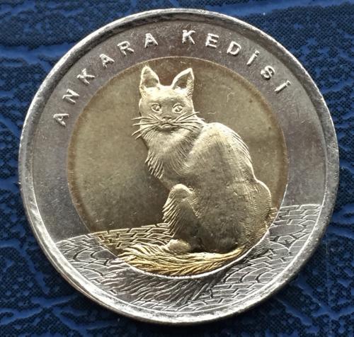 монета турция кошка